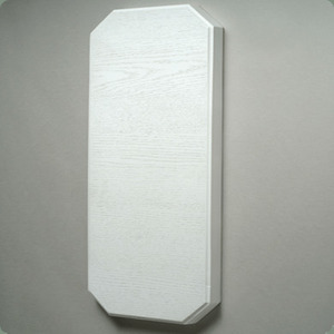 "Paragon Custom Plastics 8042 Mounting Pad, Flush, Multi-Purpose, Blank, 1-1/4"" Thick, White, Limited Quantities Available"