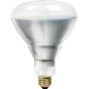 Philips Lighting 40BR40/HEA/FL-120V-12/1 40 Watt BR40 Bulb