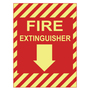 PPS1209G010 PHOTOLUMINESCENT SAFETY SIGN