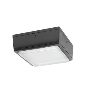 RAB VANLED40 Vandalproof Fixture, 40W LED