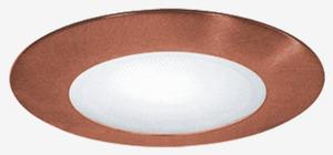 """Elite Lighting AF601BK 6"""" ALBALITE SHOWER (FOR EZ HOUSING)"""