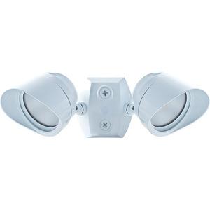 RAB BULLET2X12NW Bullet Flood Light, LED, 2-Light, 24W, 120V, White