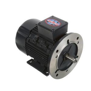 Leeson 192046.00 C80T11FZ9C MOTOR 1130 RPM 3/4HP 230/460V