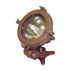 Pauluhn INX3508 LAMP 200W PAR46/3MFL