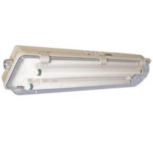Cooper Crouse-Hinds ED2N4217X113SWT Ecos ED2N Hazardous Luminaire, 4', 2-Lamp, T8, 32W, 120-277V