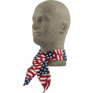 Lift Safety ACN-14F Neck Band, American Flag