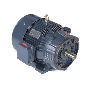 Marathon Motors GT1227A 25 3600 TEFC 284TSC 3/60/230/460