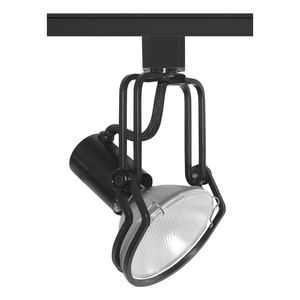 Juno Lighting T435-BL WIREFORM PAR30