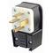 8452-P EB PLUG AGL 23P/4W 15-50P 50A250V