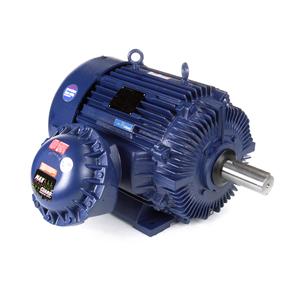 Marathon Motors E594 405TTGS6548 100 1800 EPFC 405T 3/60/230/460