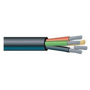 Prysmian 026084 Type P Power Cable, 2/4, Copper, Unarmored, 600V