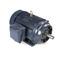 Marathon Motors GT1243 365TTFCA6038 75 1800 TEFC 365TC 3/60/230/460