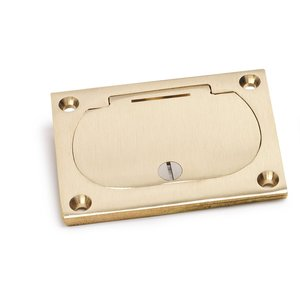 Lew 6304-DFB-1 Hinged Cover for Duplex, Brass