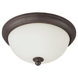 Sea Gull 75026-799 Ceiling Fixture, 2 Light, Peppercorn