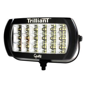 Grote 01-63E6-70 24V LED WORK LAMP -