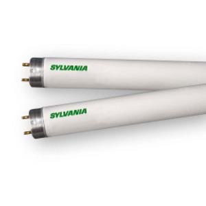 32W 4FT T8 FLUORESCENT LAMP XPS 4100K