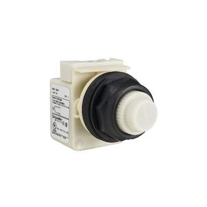 Square D 9001SKT38W9 Pilot Light, Push to Test, White, Plastic Domed, 120VAC/DC