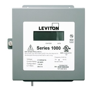 Leviton 1N240-11 100A, 1P, Series 1000, Dual Element Meter