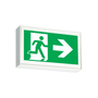 LS1WS STEEL EXIT SIGN 120/347 SELF PWR.