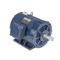 Marathon Motors U771 284TTDC6026 25 1800 DP 284T 3/60/50/208-230/460