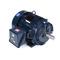 Marathon Motors Y574 365THFS8036 75 1800 TEFC 365T 3/60/230/460