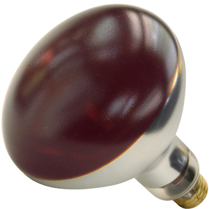 Shat-R-Shield 01713I Incandescent Heat Lamp, Shatter-Resistant, R40, 250W, 120V, Red *** Discontinued ***