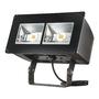 NFFLD-C40-T-347 LED PROJ.16900L TRUNION