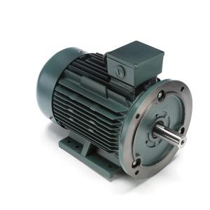 Leeson 193345.60 7.5KW 3450RPM