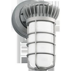 RAB VXBRLED26DG Partial LED Vaporproof Fixture, 26W, Die Cast Globe, 5000K