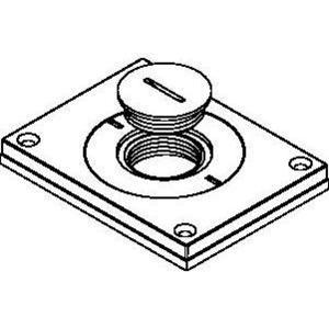 Wiremold 829CKAL-1BS Cover Plate, Brass