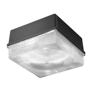 Hubbell - Lighting NRG4-30LU-5K-BZ Vandal-Resistant LED Fixture, 70W, 120-277V, 5000K, Bronze