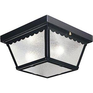 Progress Lighting P5729-31 Two-Light 9in FM for Indoor/Outdoor