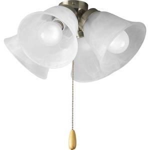 Progress Lighting P2643-09WB Fan Light Kit