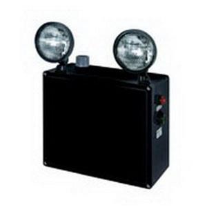 Appleton N2LS28366 EMERGENCY LIGHT C1D2 2-LAMP 6V