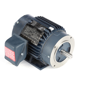 Leeson 810546.00 2 HP TENV MOTOR
