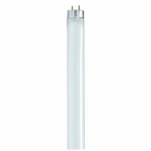 "Satco S8422 Fluorescent Lamp, Reduced Wattage, T8, 48"", 28W, 3000K"