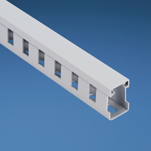 Panduit TNC50X50LG2 Low-Smoke, Halogen-Free Slotted Wall Wir