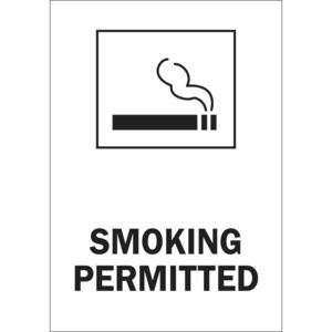 25145 NO SMOKING SIGN