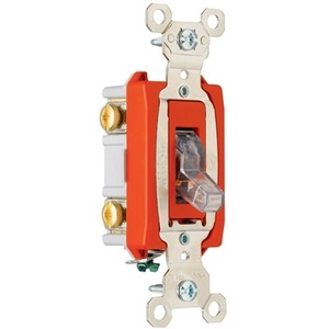 Pass & Seymour PS20AC2-CPL Double Pole Pilot Switch, 20A, 120V, Clear,  Lighted when ON