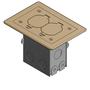 71W-DS-C RESI 1G FLR BOX DPLX BRASS PIGT