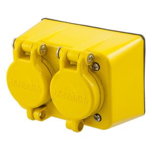 Hubbell-Wiring Kellems HBL60W47D WATERTIGHT 15A/125V 5-15 DUPLX REC