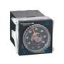 RE48AML12MW TMR 24-240VAC/DCPLUG-I