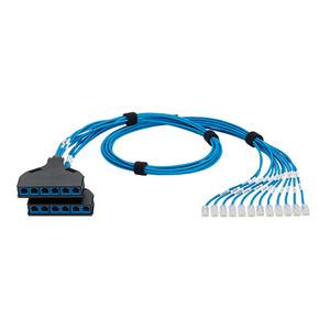 Panduit QPCSDB6XB14 QN Switch Port Harness, Cat 6 28AWG Blue