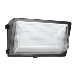 RAB WP3LED55 WAL 55W COOL 120-277 WITH GLAS
