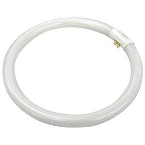 TCP 3203241K Fluorescent Lamp, Circular, T6, 32W, 4100K