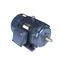 Marathon Motors E801A 326TSTFC6036 50 1800 TEFC 326TS 3/60/230/460