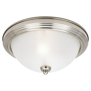 Sea Gull 77064-962 Ceiling Light, 2-Light, 60W, Brushed Nickel