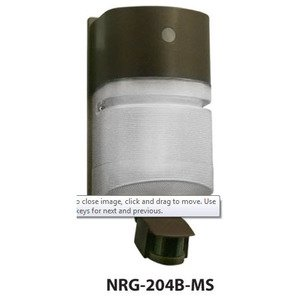 Hubbell - Lighting NRG-204B-MS Wallpack, Compact Fluorescent, 1 Light, 42W, 120V, Bronze