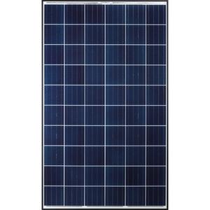Q CELLS Q.PLUS-BFR-G4.1-290 Solar Module, Polycrystalline, 290W, 60 Cells, Black Frame