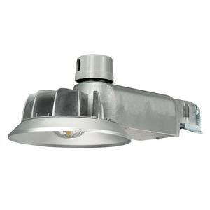 Lumark CTKRV1A Caretaker LED, Area Light, 50W, Gray
